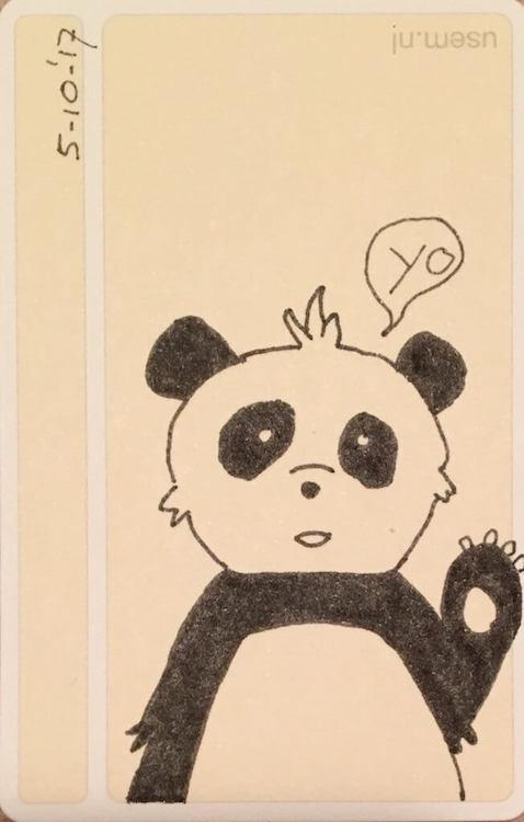 Doodle: Panda bear says yo
